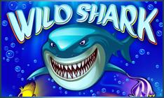 Wild Shark videoslot